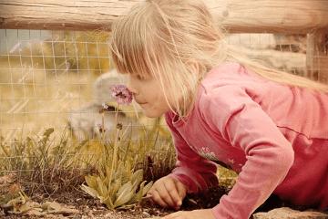 2020鼠年10月的女宝宝取名实例
