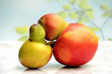 生果产品起大名分享