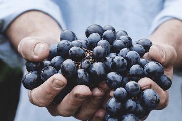 农副产品取名方法技巧